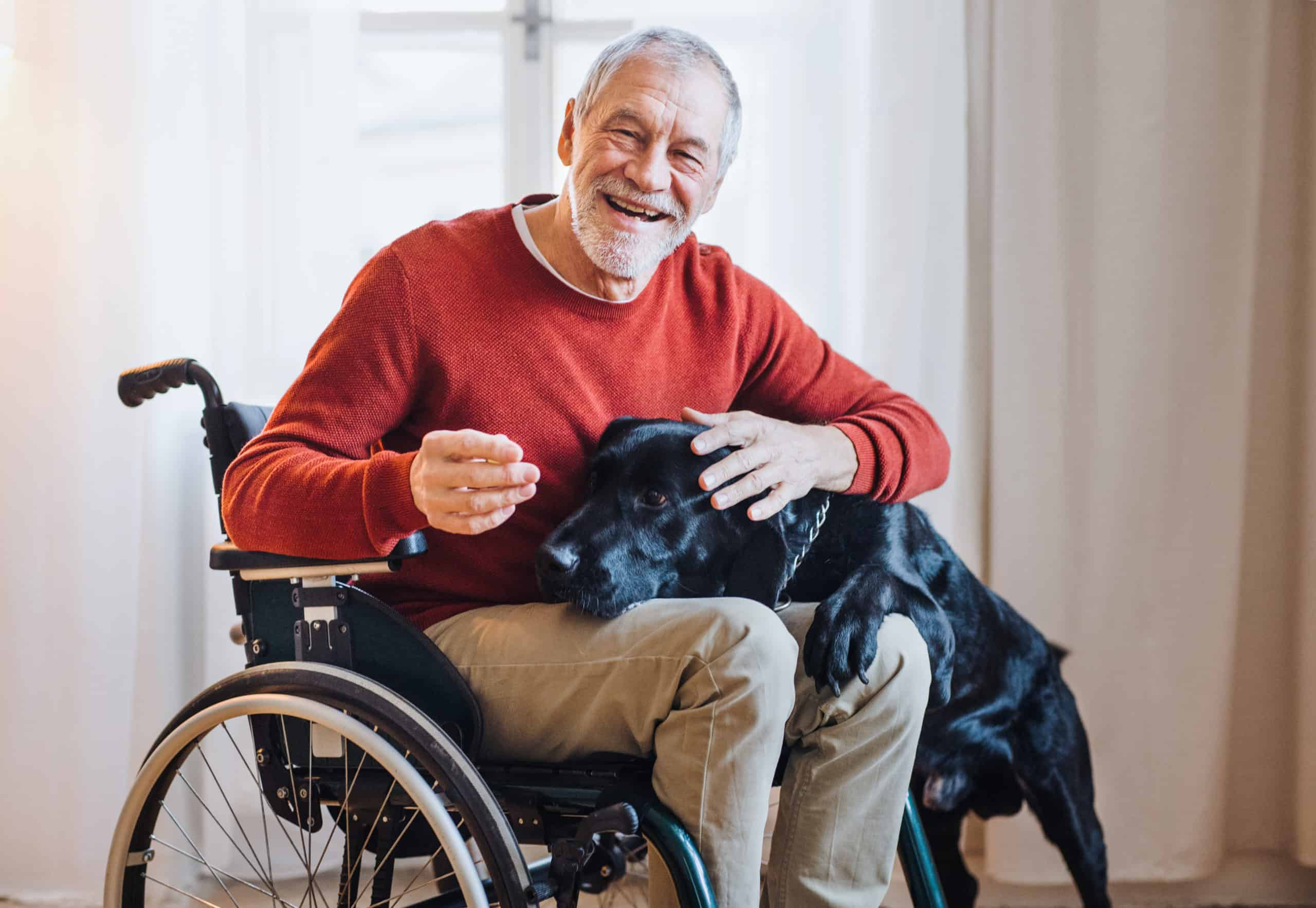 elderly man in a wheelchair with a dog in his lap