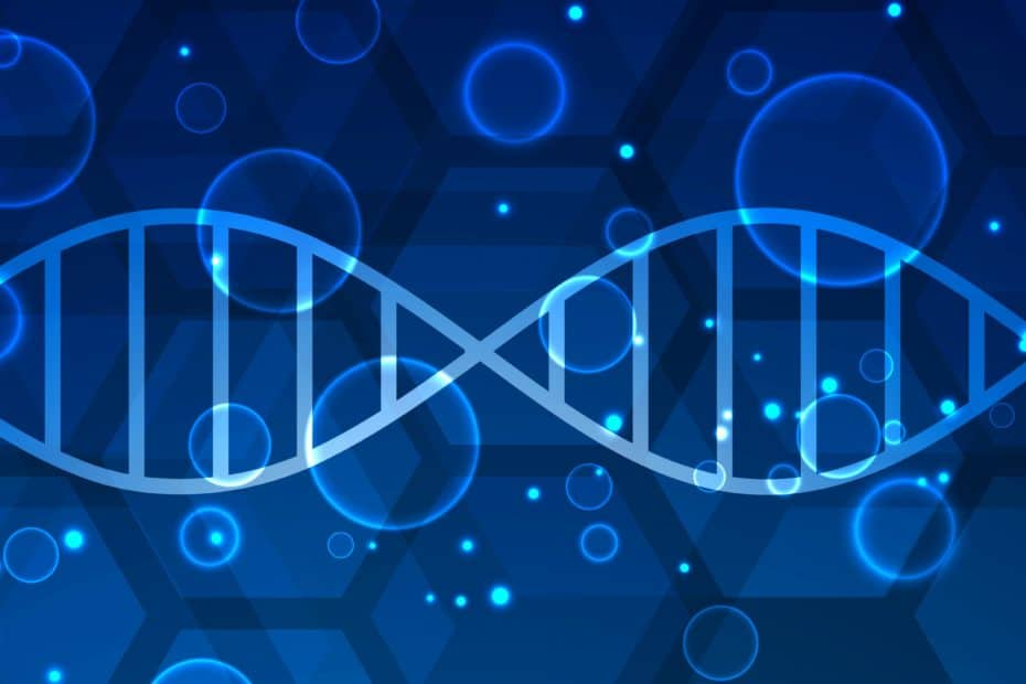 blue dna blue medical and healthcare